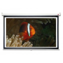 Projection / NOBO projection screen 1771x996mm 16: 9 1904075E